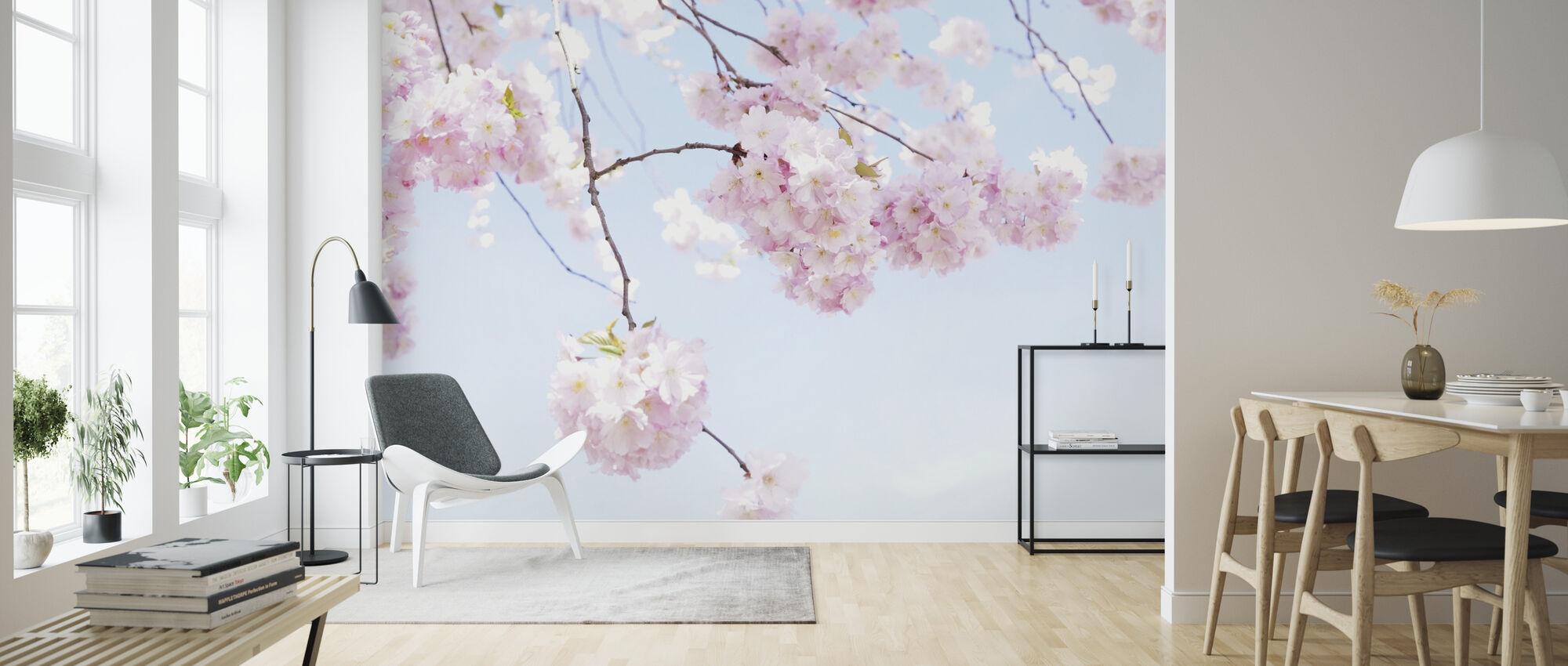 Blooming Cherry Flowers - Wallpaper - Living Room