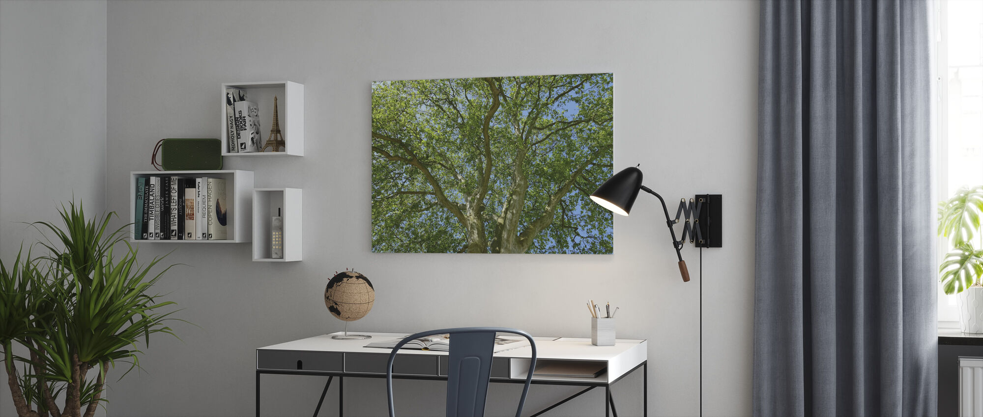 Tree Crown - Canvas print - Office