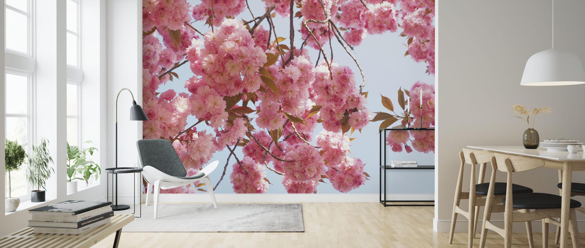 Pink Cherry Flowers - Wallpaper - Living Room
