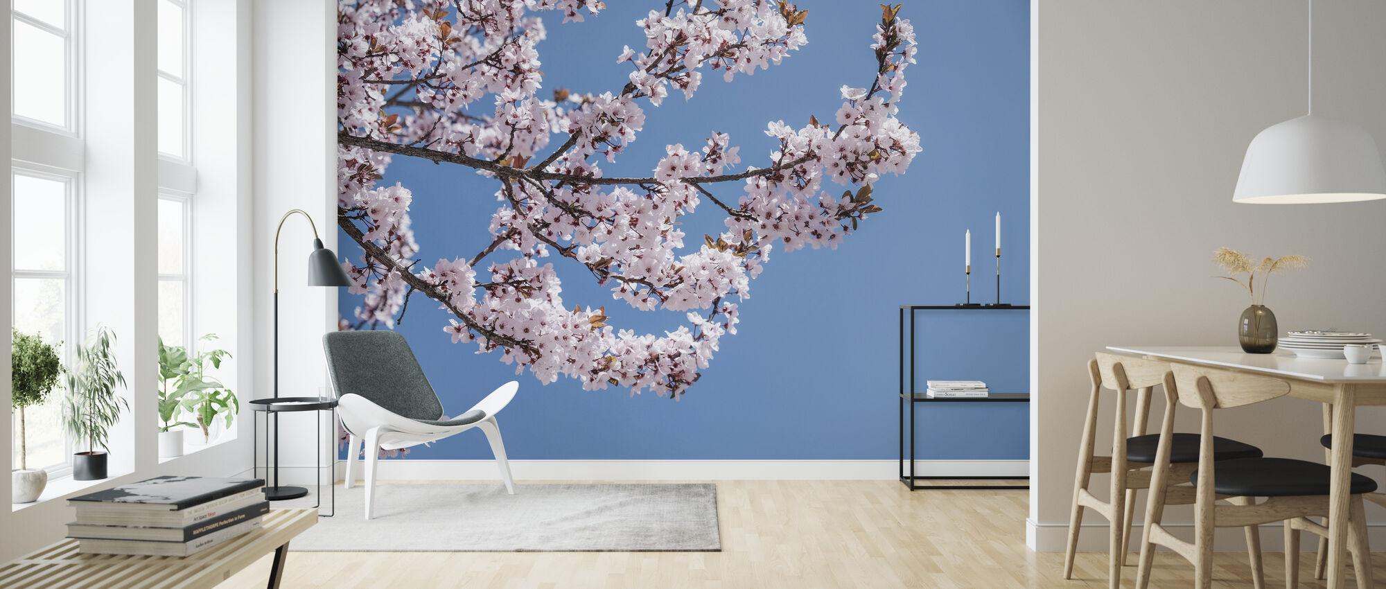 Pink Blossom Flowers - Wallpaper - Living Room