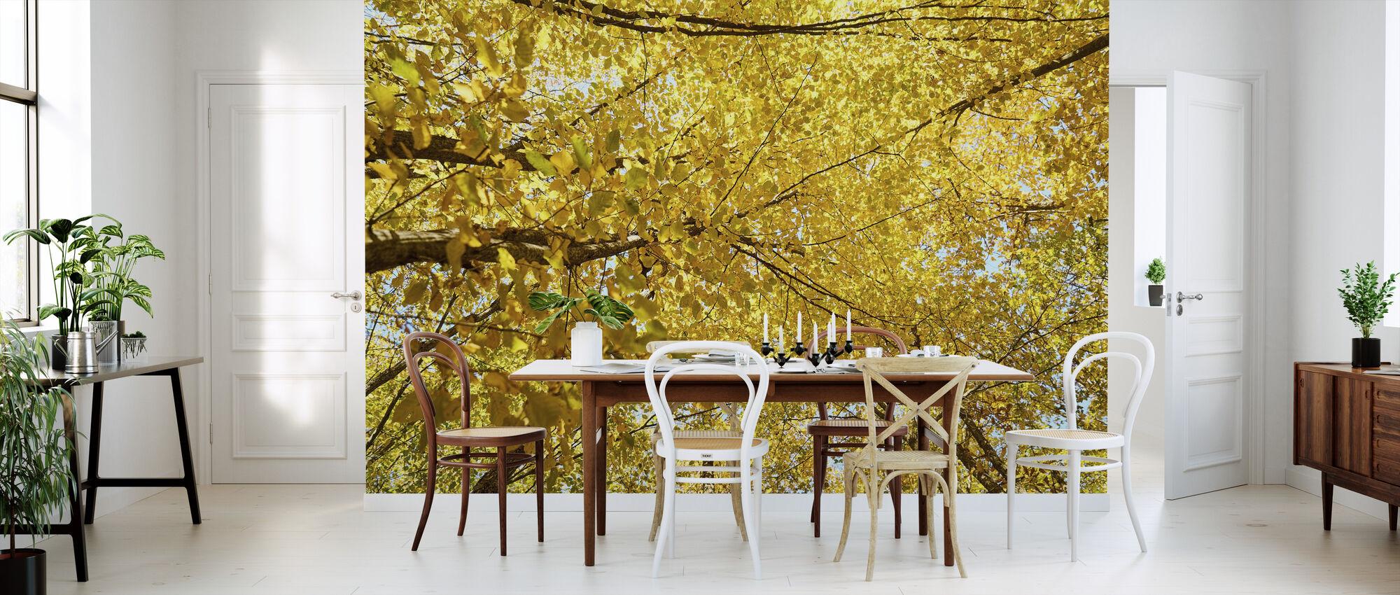 Gelbe Blätter - Tapete - Küchen