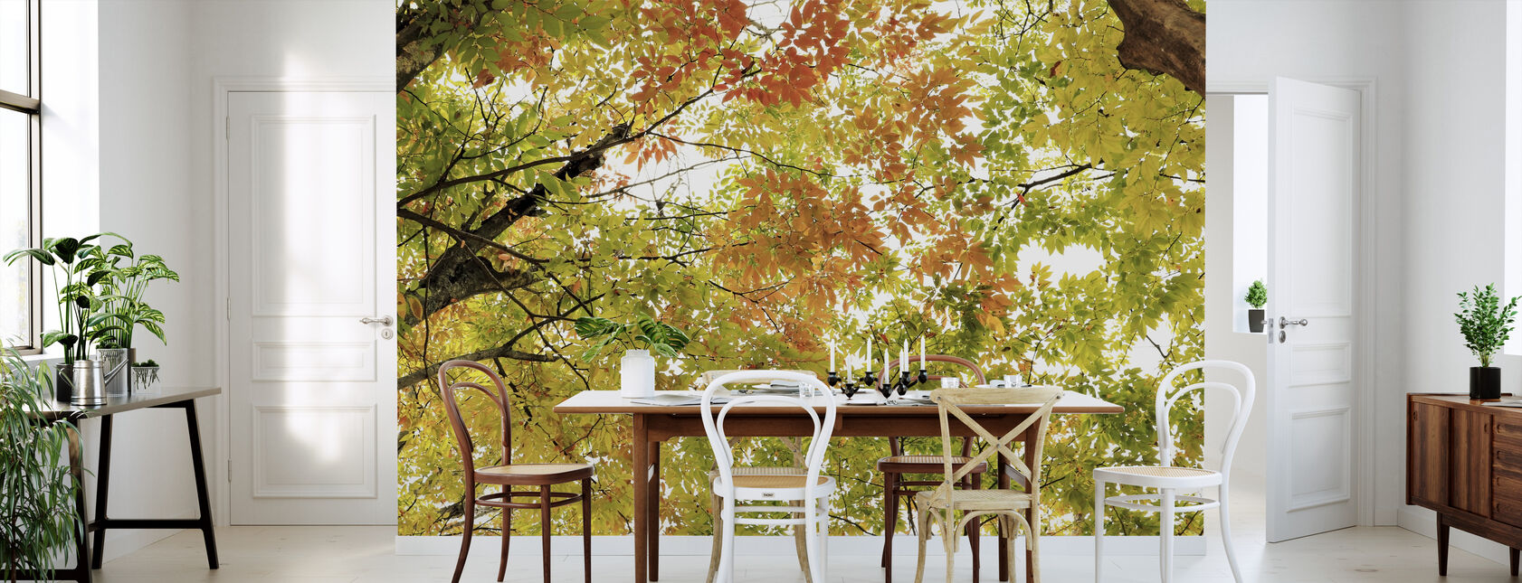 Colors of Autumn Leaves - Wallpaper - Kitchen