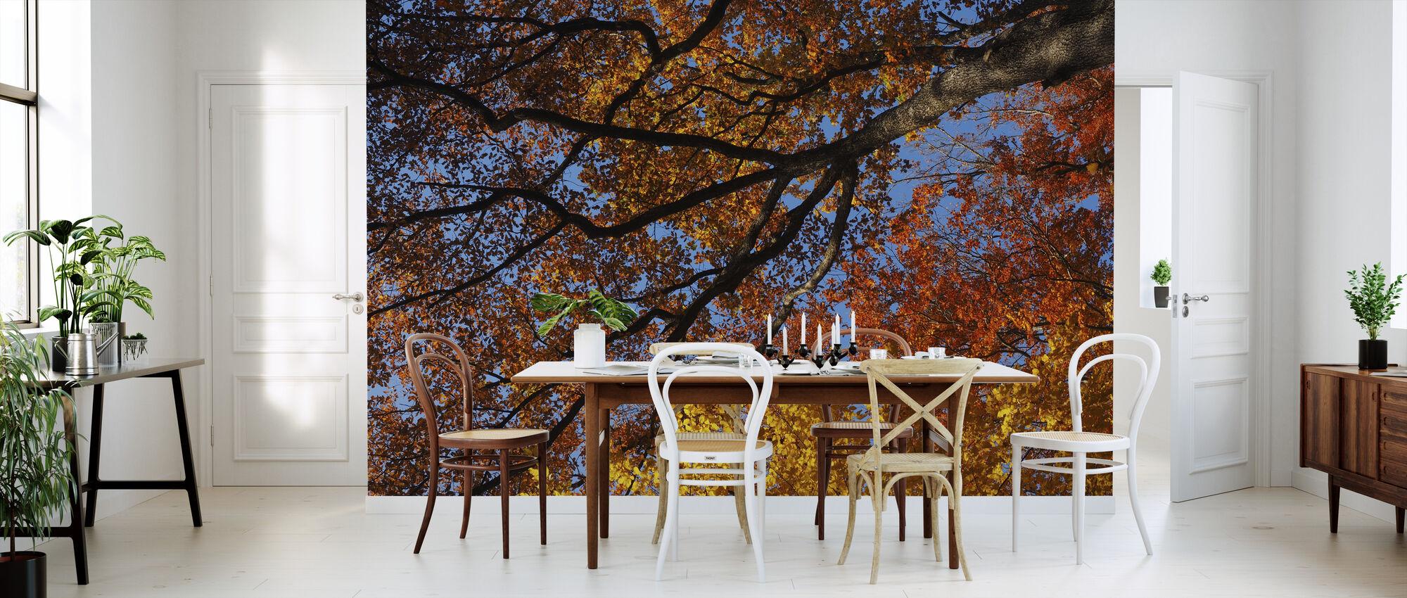 Farverige efterårsblade - Tapet - Køkken