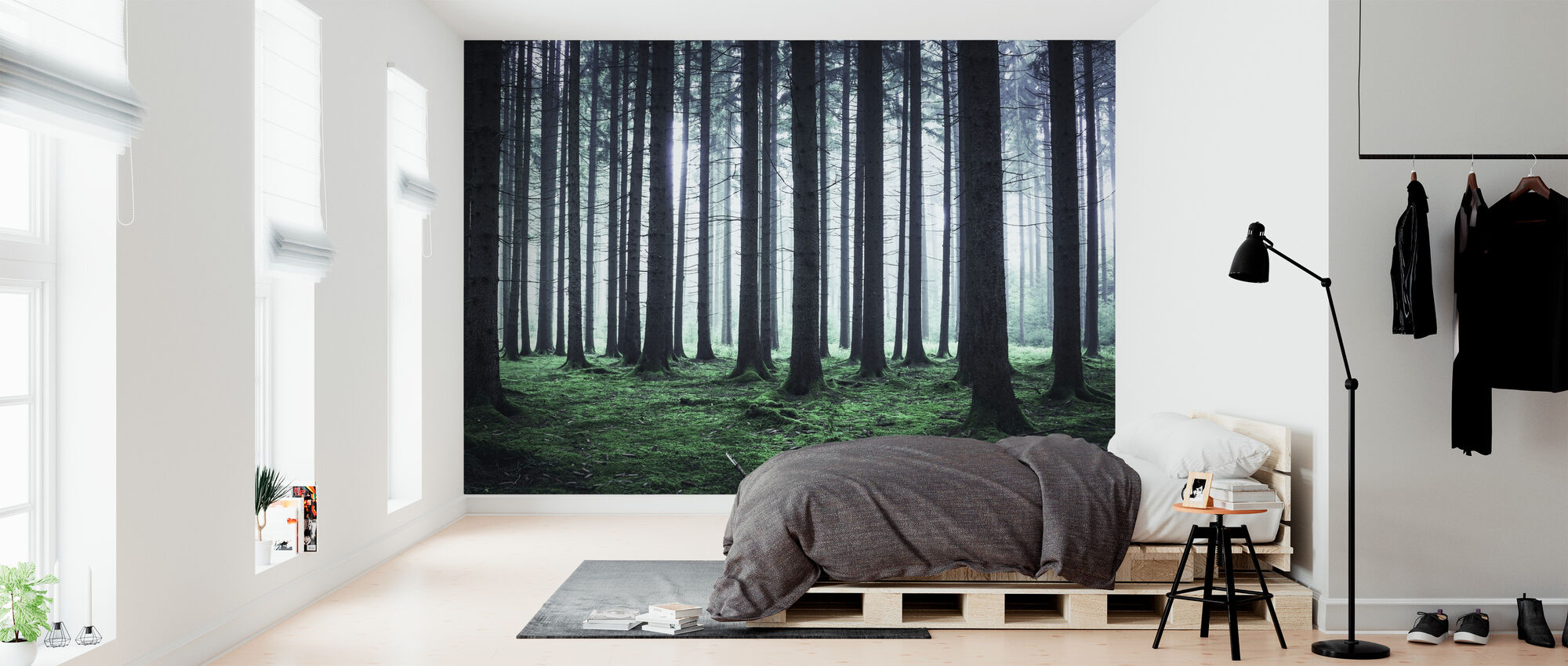 Foggy Forest - Wallpaper - Bedroom