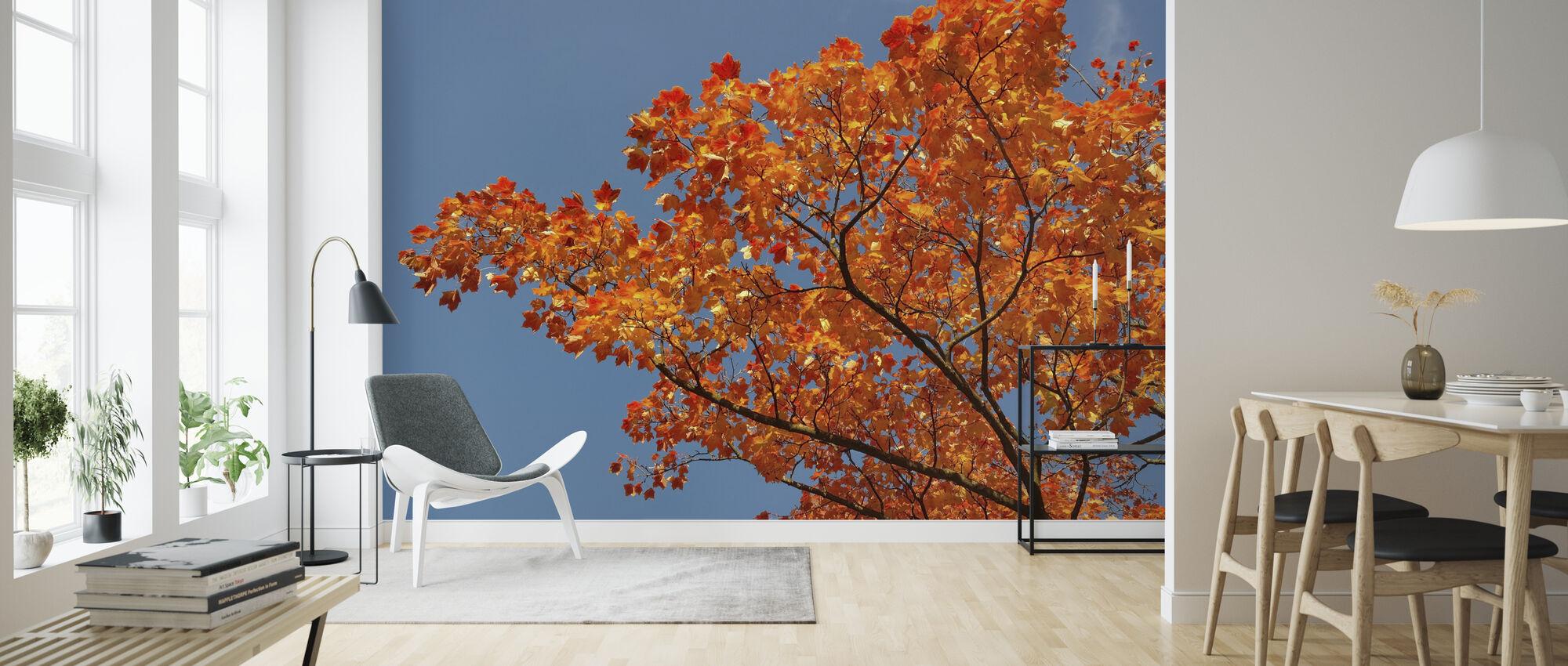 Ahornblätter - Tapete - Wohnzimmer
