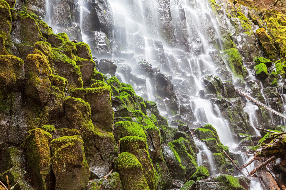 Kuva Waterfall and Moss Tapetit / tapetti 100 x 100 cm