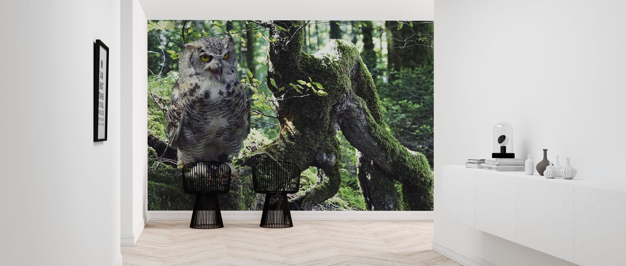 Young Eagle Owl - Wallpaper - Hallway