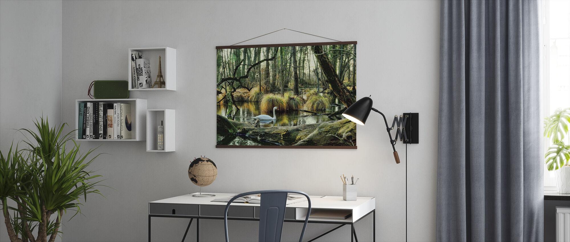 Swan in Swamp - Poster - Office