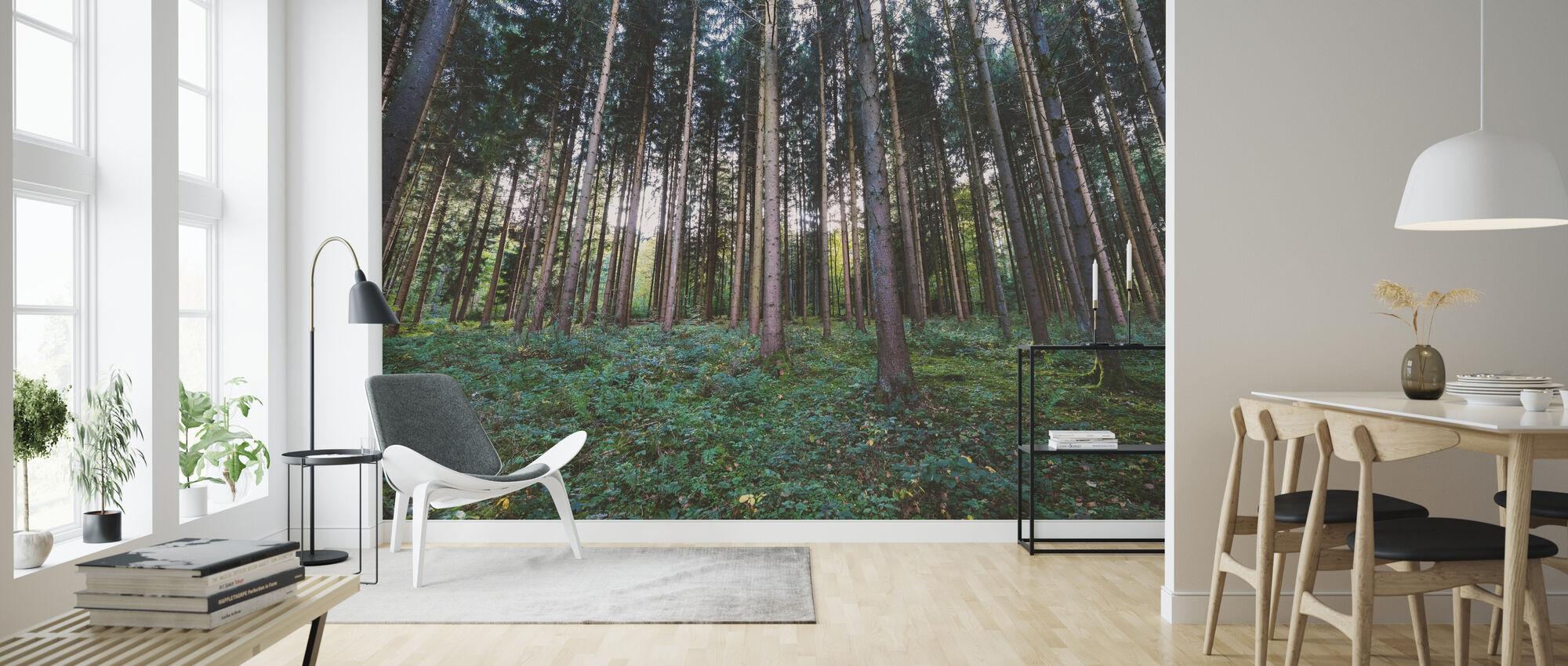 Forest Landscape - Wallpaper - Living Room
