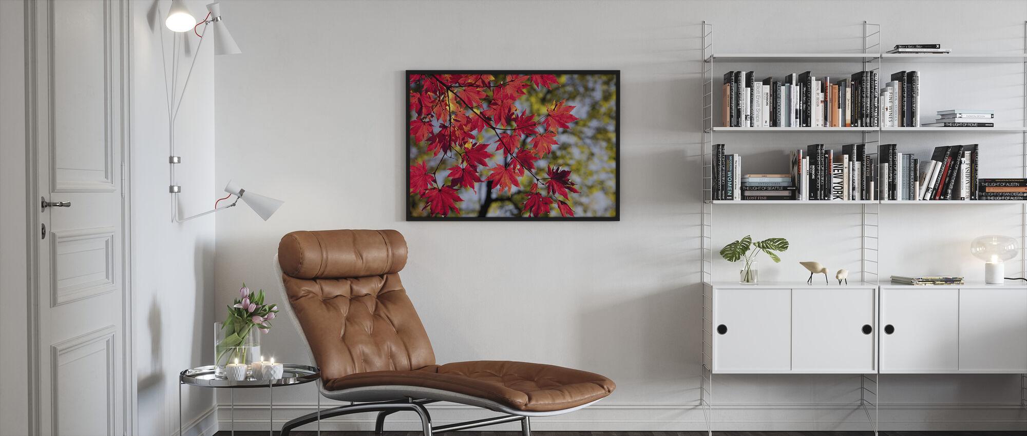 Autumn Maple Leaves - Framed print - Living Room