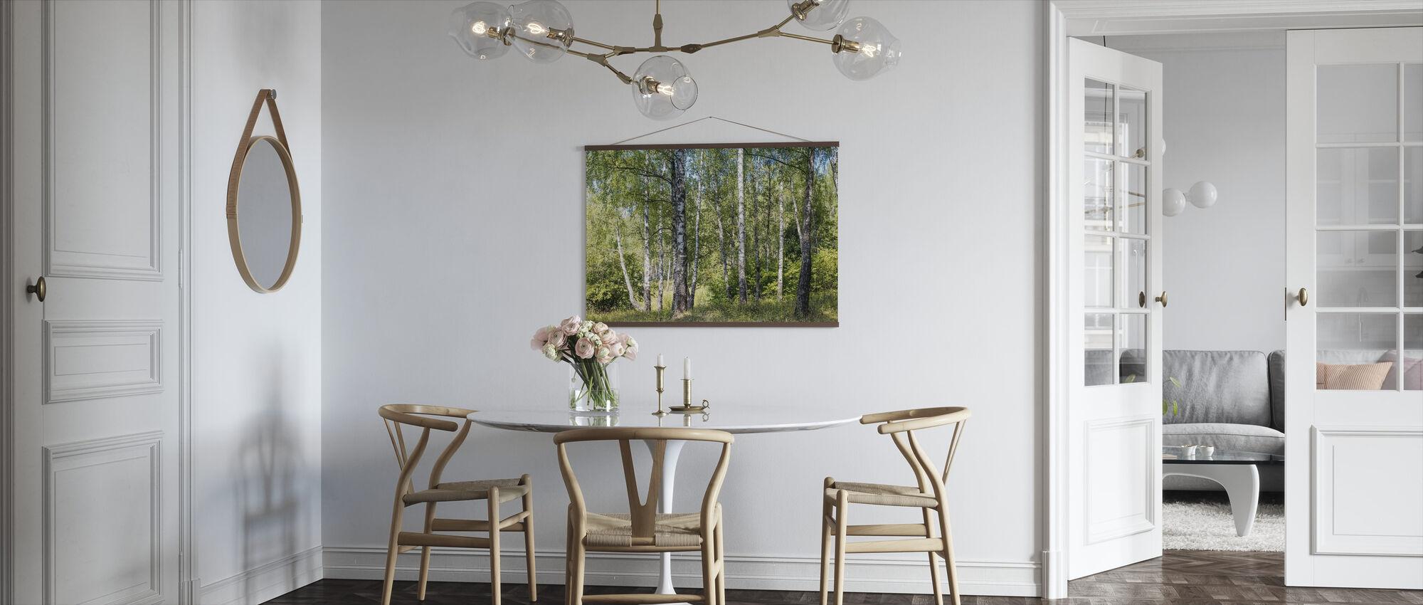 Birch Grove Trees - Poster - Kitchen