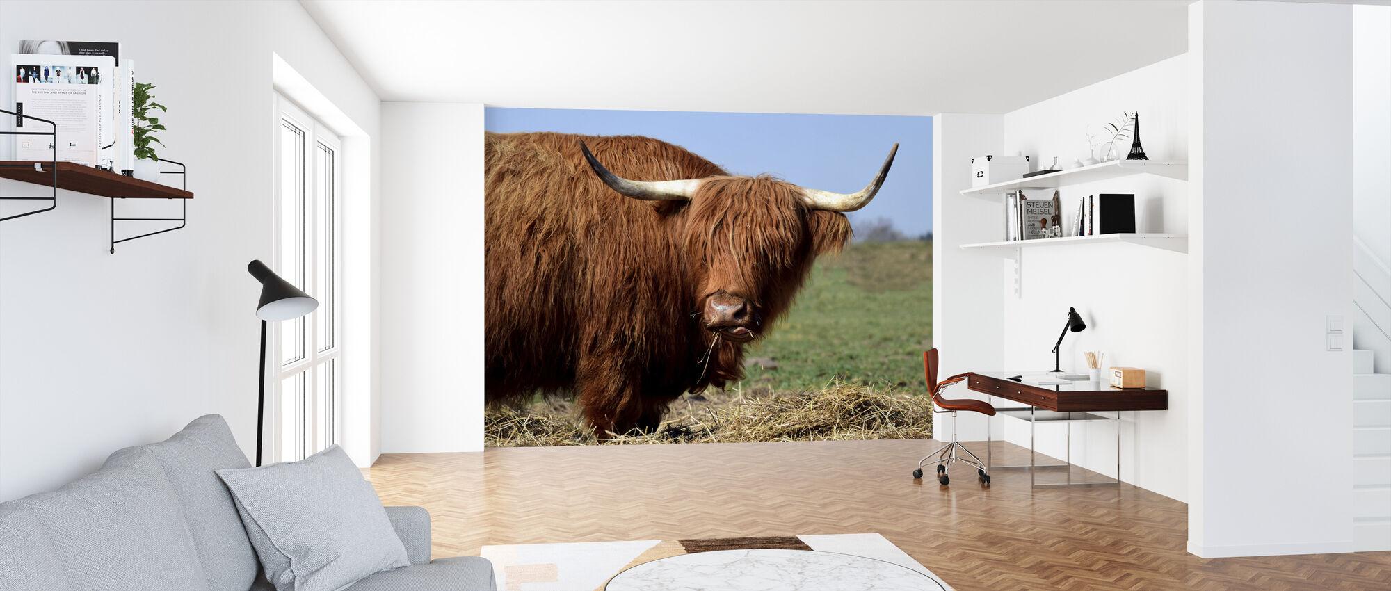 Galloway - Wallpaper - Office