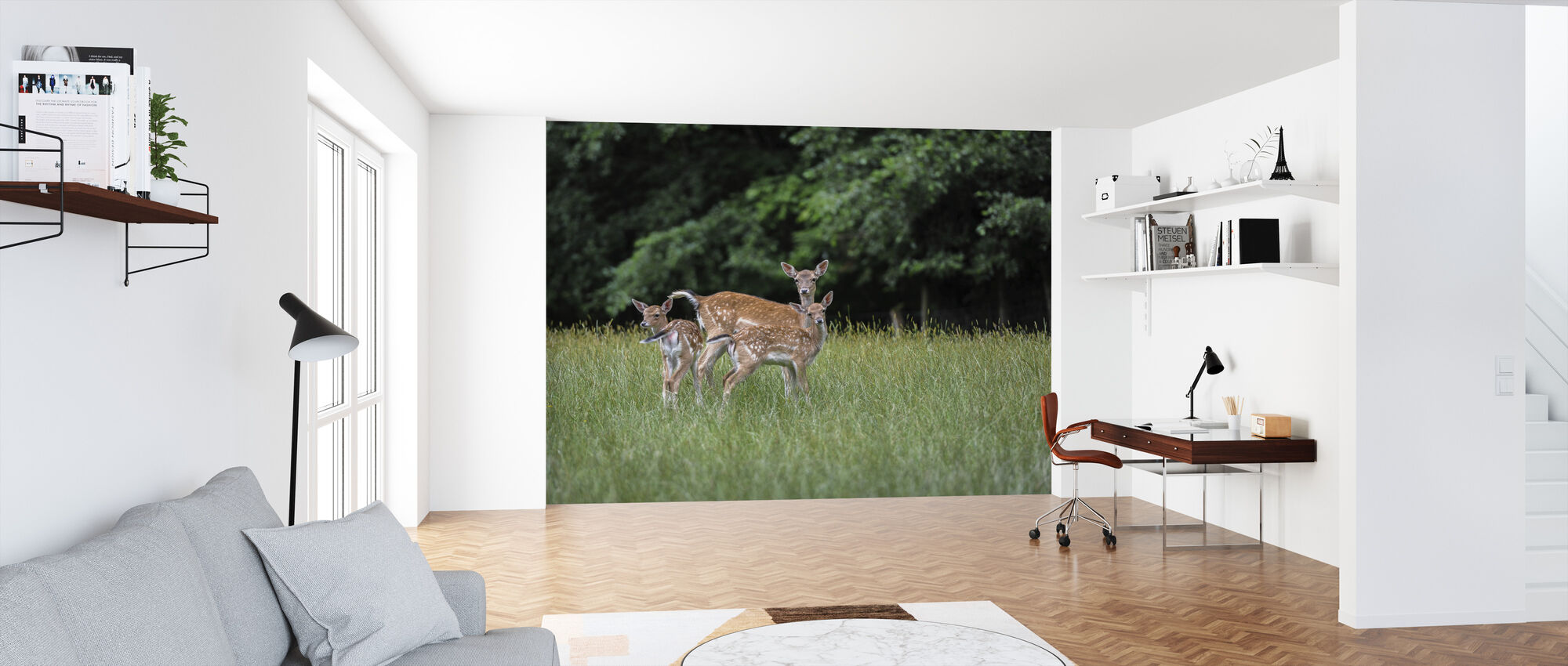 White Tailed Deer - Wallpaper - Office