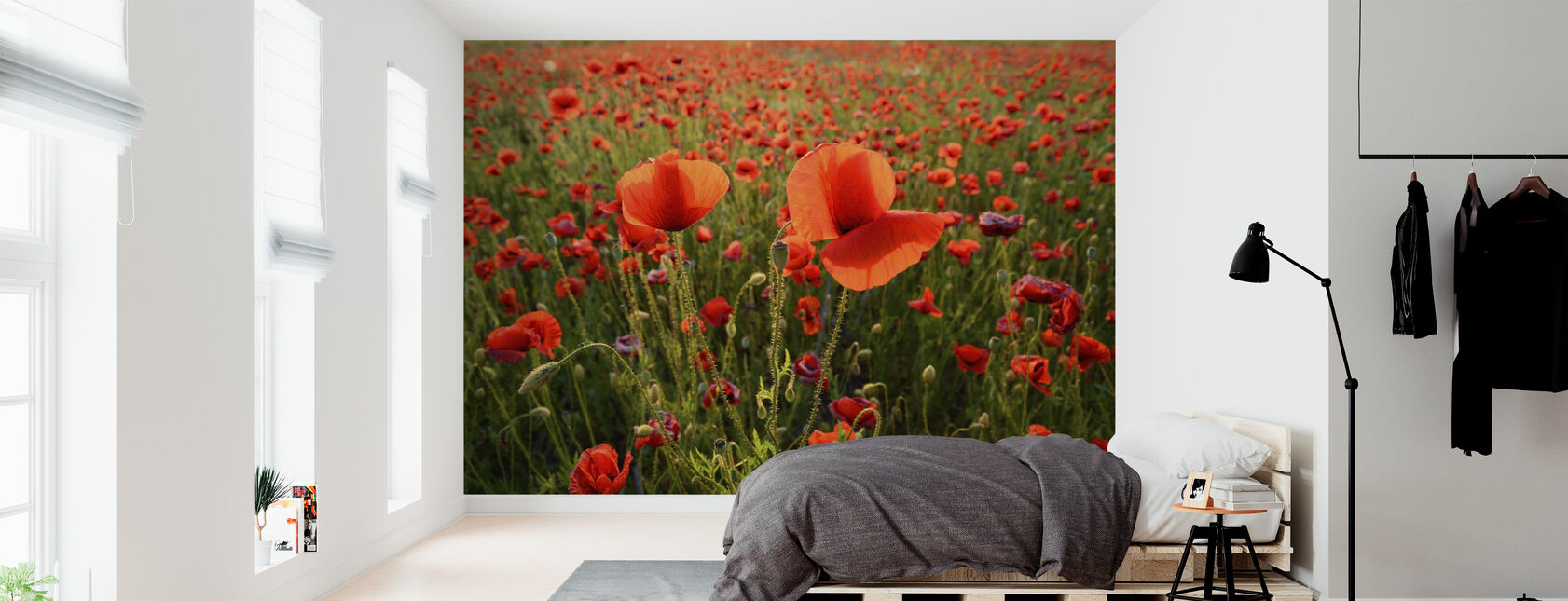 Poppy Fields - Wallpaper - Bedroom