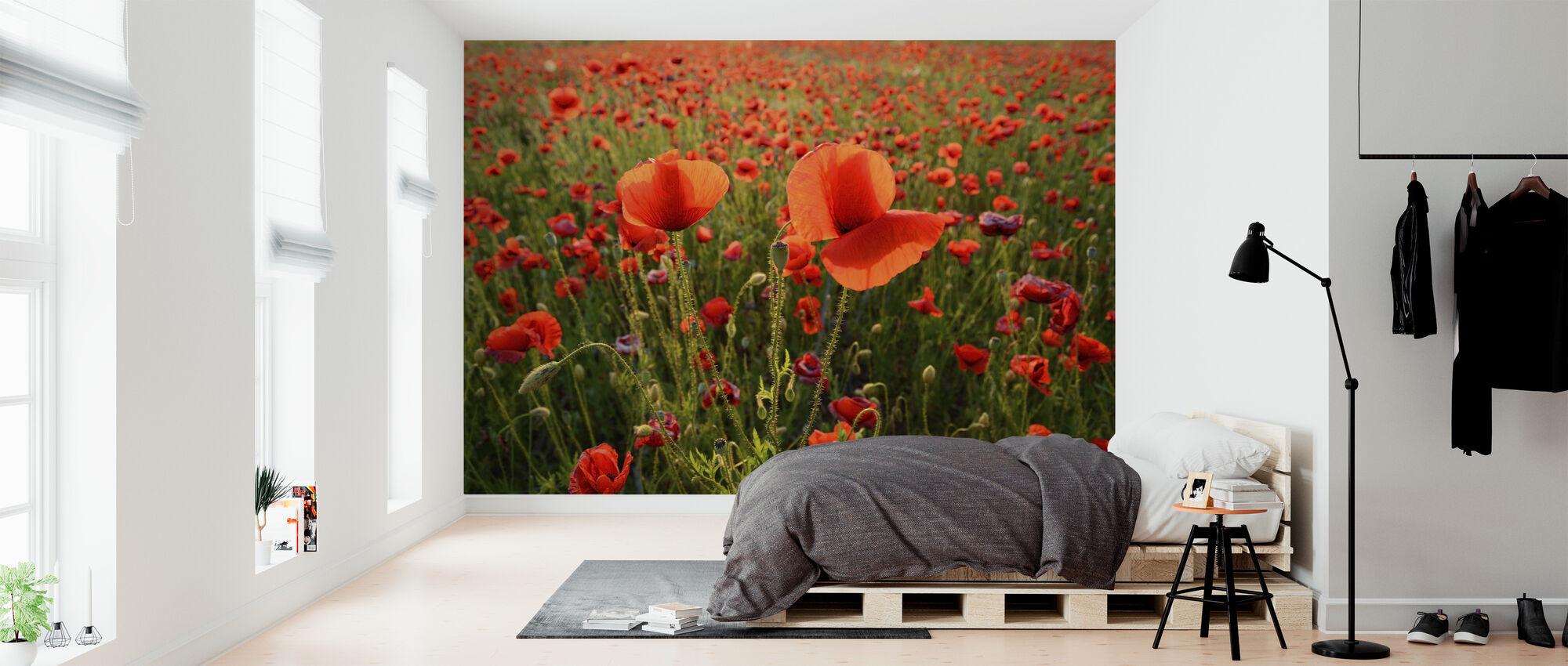 Poppy Fields - Wallpaper - Bedroom