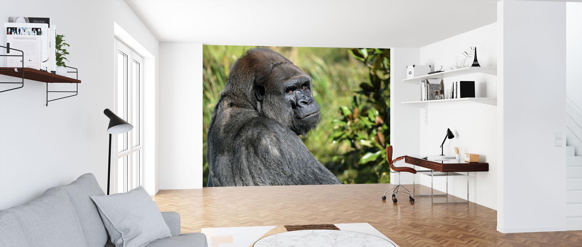 Silverback Gorilla - Tapete - Büro