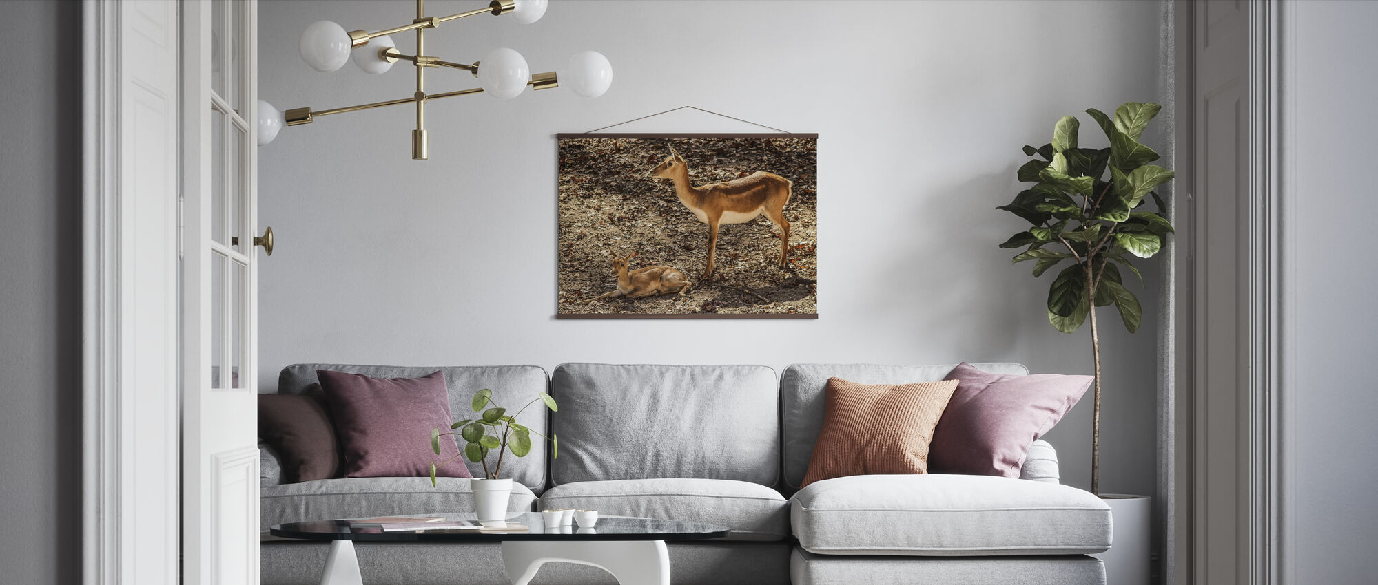 Gazelle Impala - Poster - Living Room