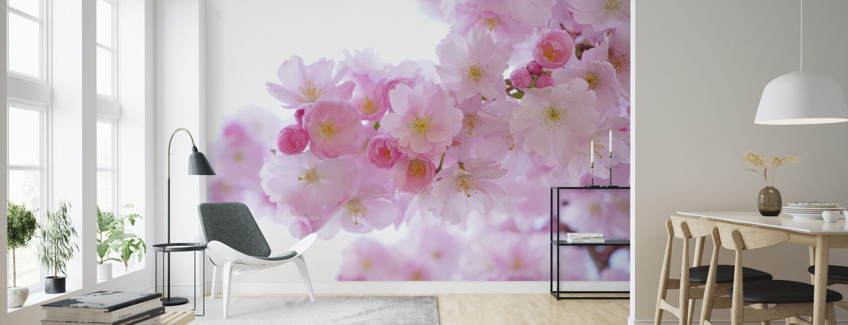 Blossom Körsbär Blommor - Tapet - Vardagsrum