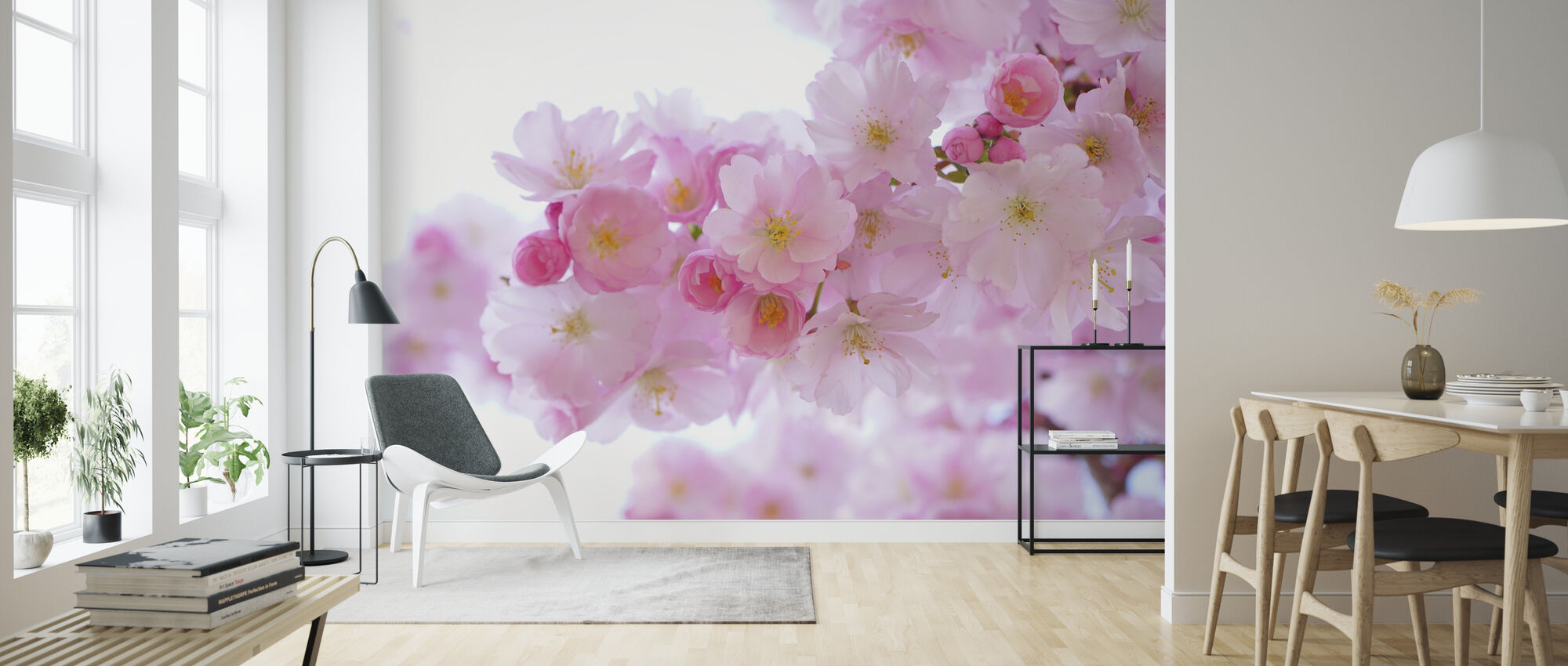 Blossom Cherry Flowers - Wallpaper - Living Room