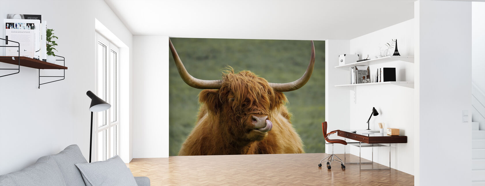 Highland Cattle - Wallpaper - Office