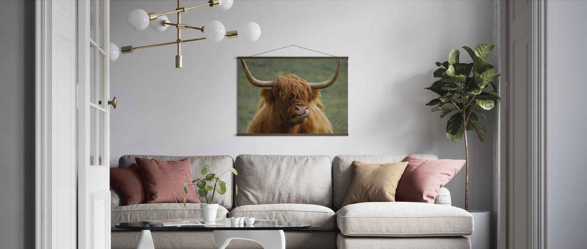 Highland Cattle - Poster - Living Room