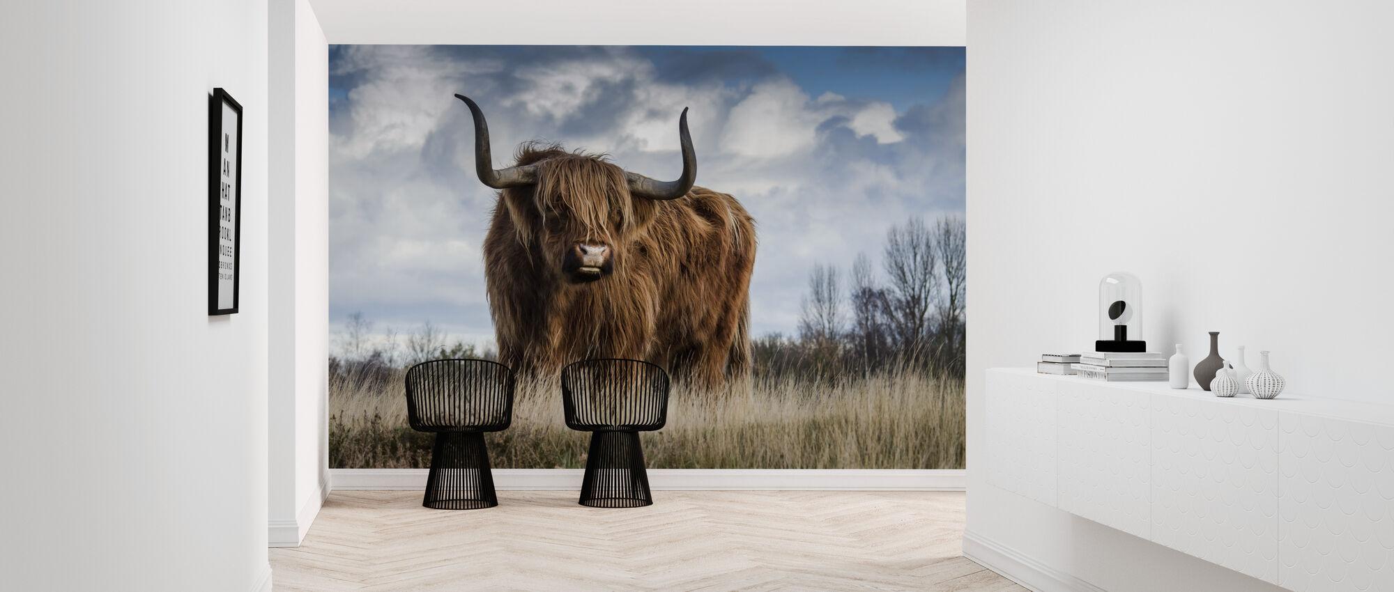 Bull in the Meadow - Wallpaper - Hallway