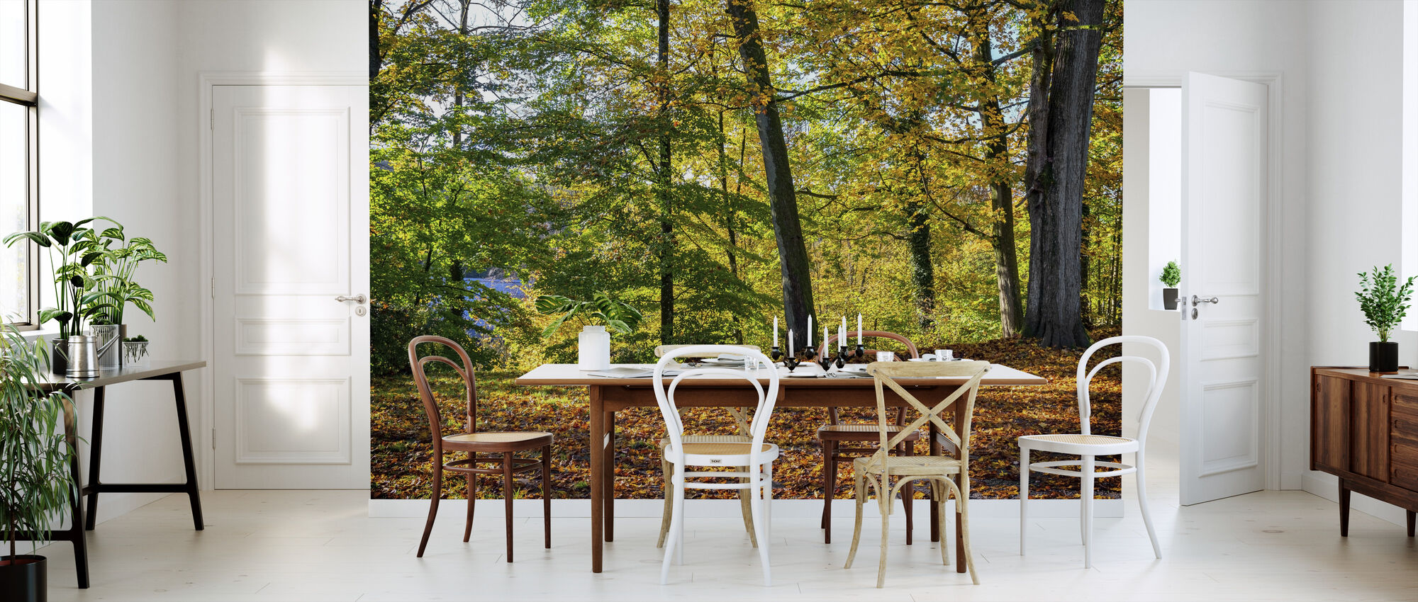 Autumn Forest - Wallpaper - Kitchen