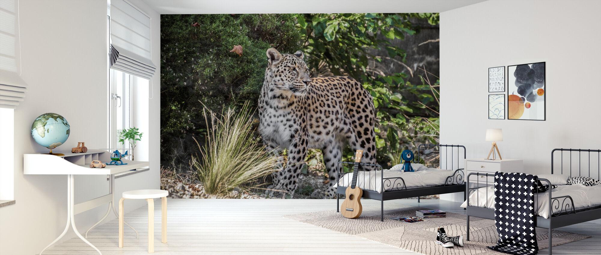 Leopard Stares - Wallpaper - Kids Room