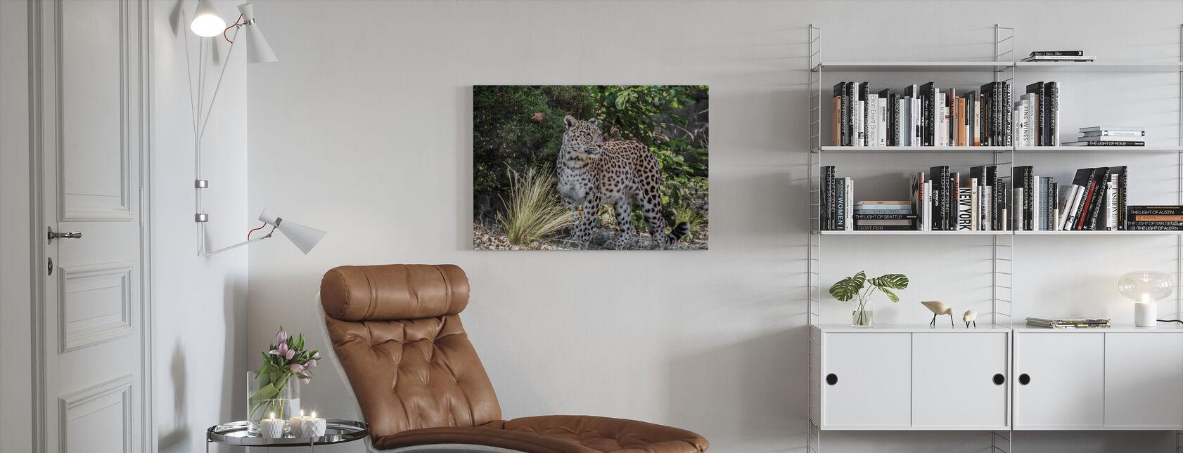 Leopardenstarren - Leinwandbild - Wohnzimmer