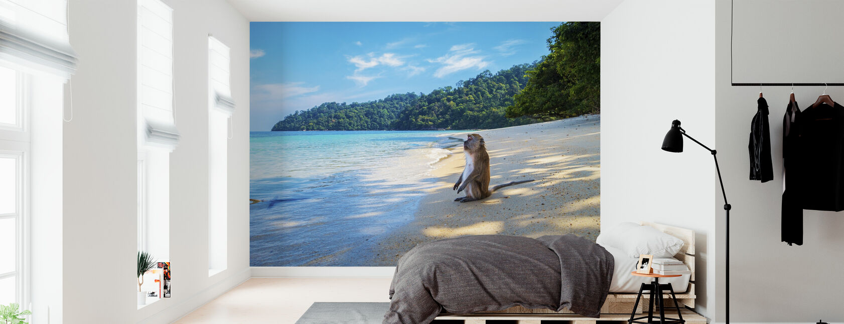 Monkey by the Beach - Wallpaper - Bedroom