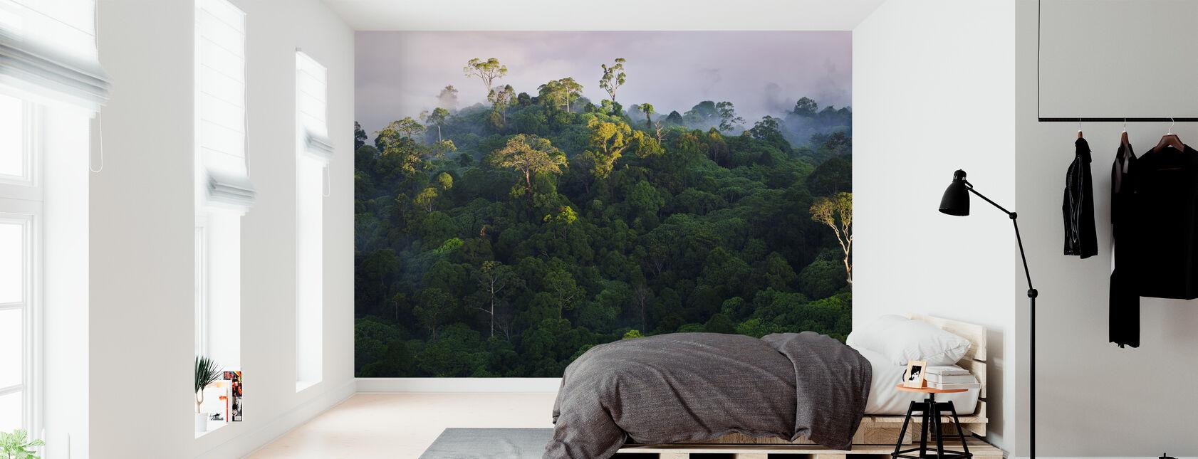 Zonsopgang bij Lowland Rainforest - Behang - Slaapkamer