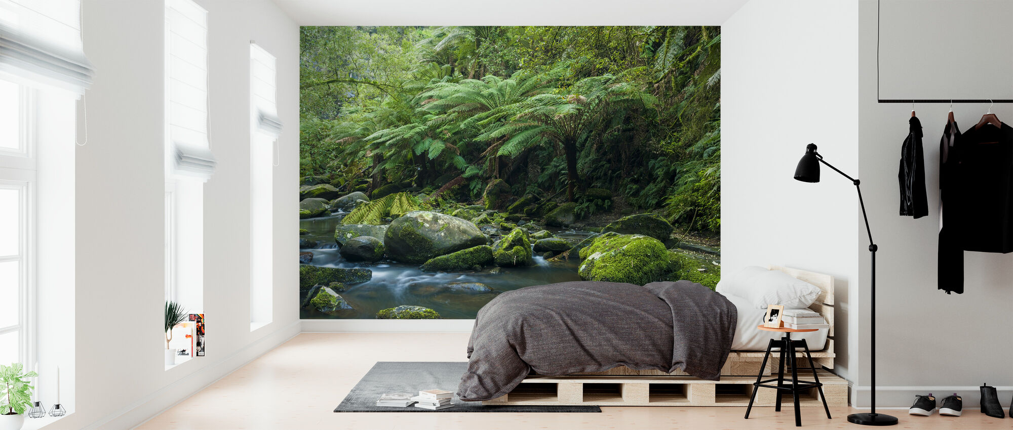 Great Otway National Park - Wallpaper - Bedroom