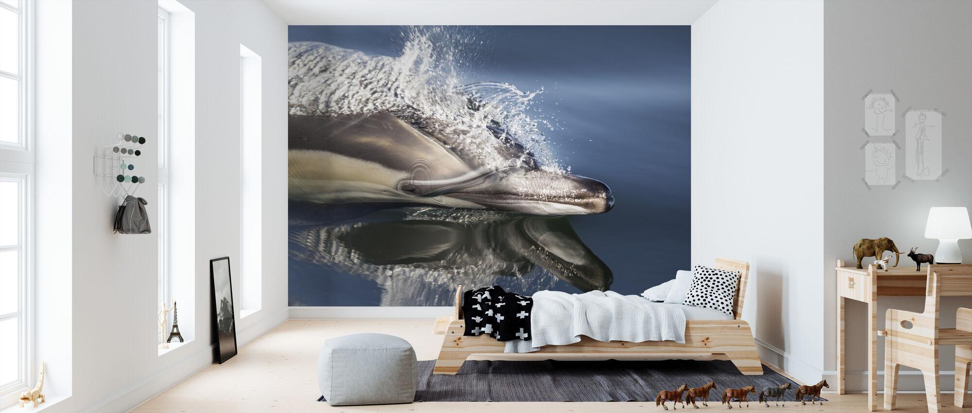 Långbäbbade delfiner - Tapet - Barnrum