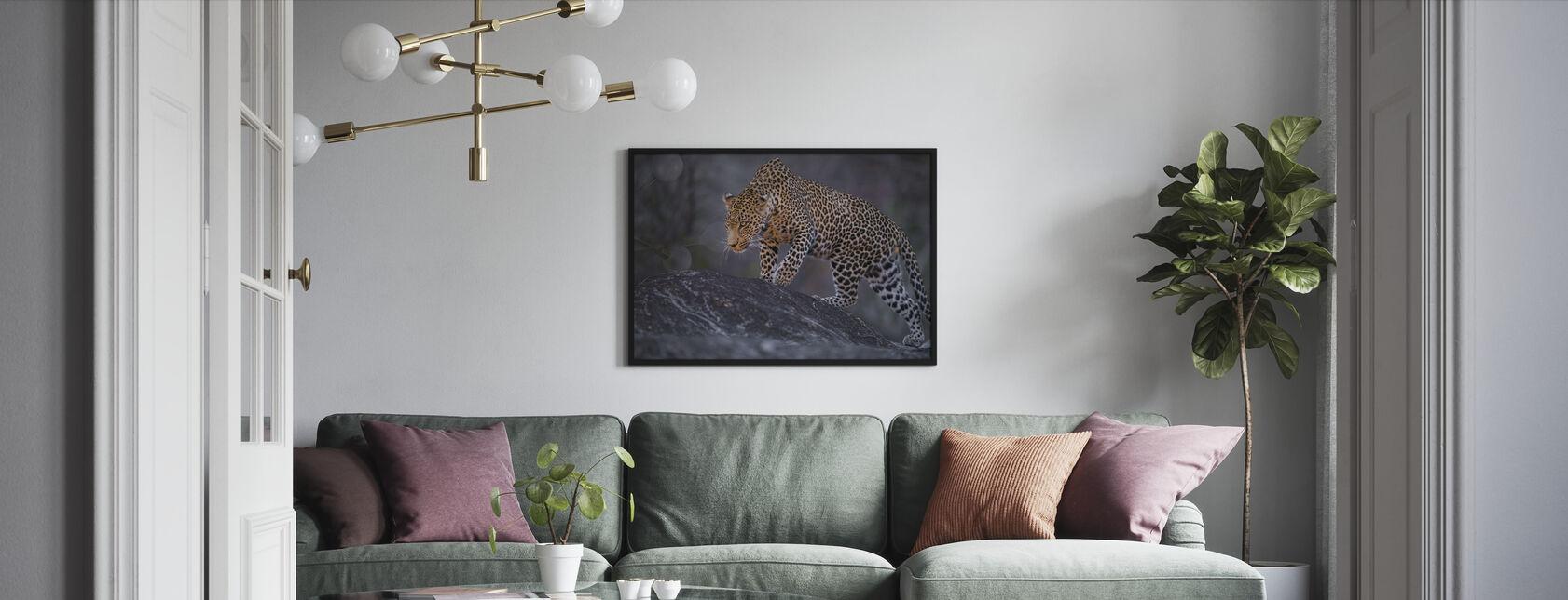 Leopard Mann - Innrammet bilde - Stue