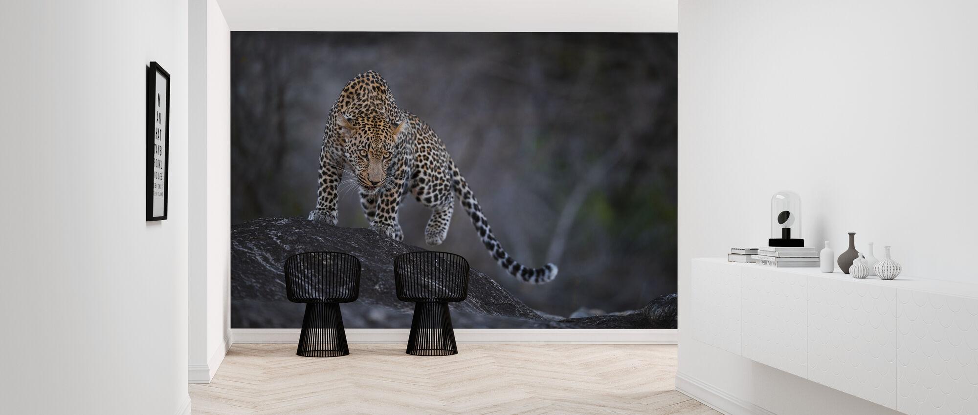 Luipaard op een rots - Behang - Gang