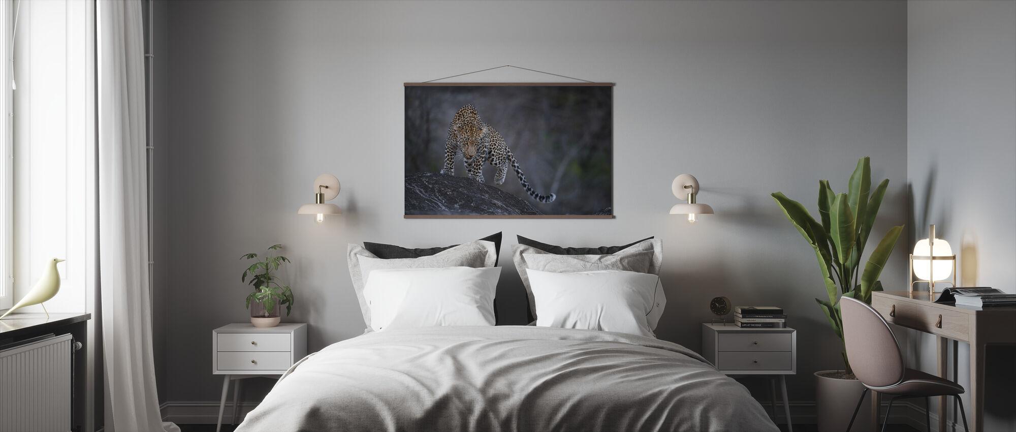 Luipaard op een rots - Poster - Slaapkamer