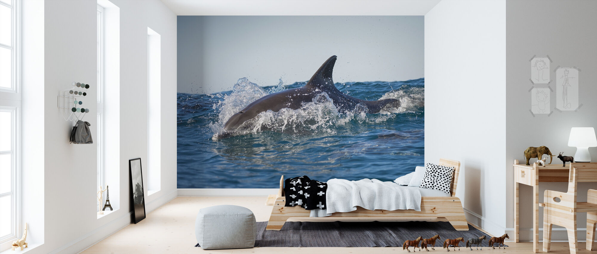 Bottlenose Dolphin - Wallpaper - Kids Room
