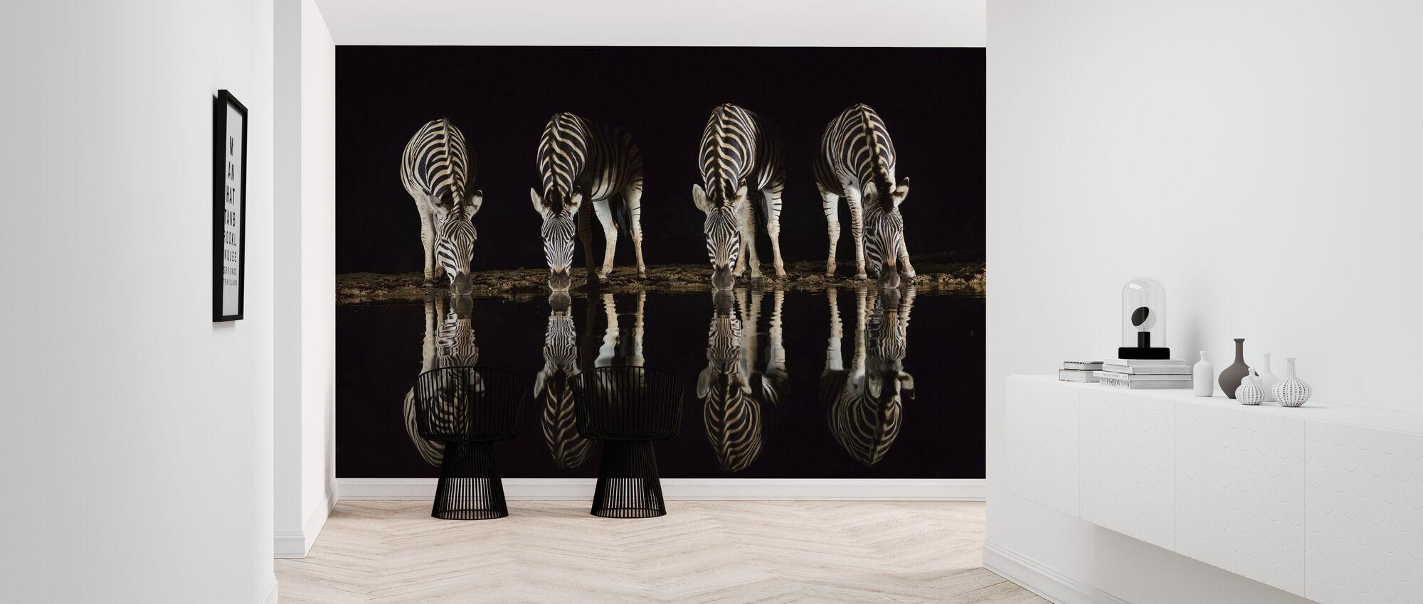 Plains Zebra Drinken - Behang - Gang