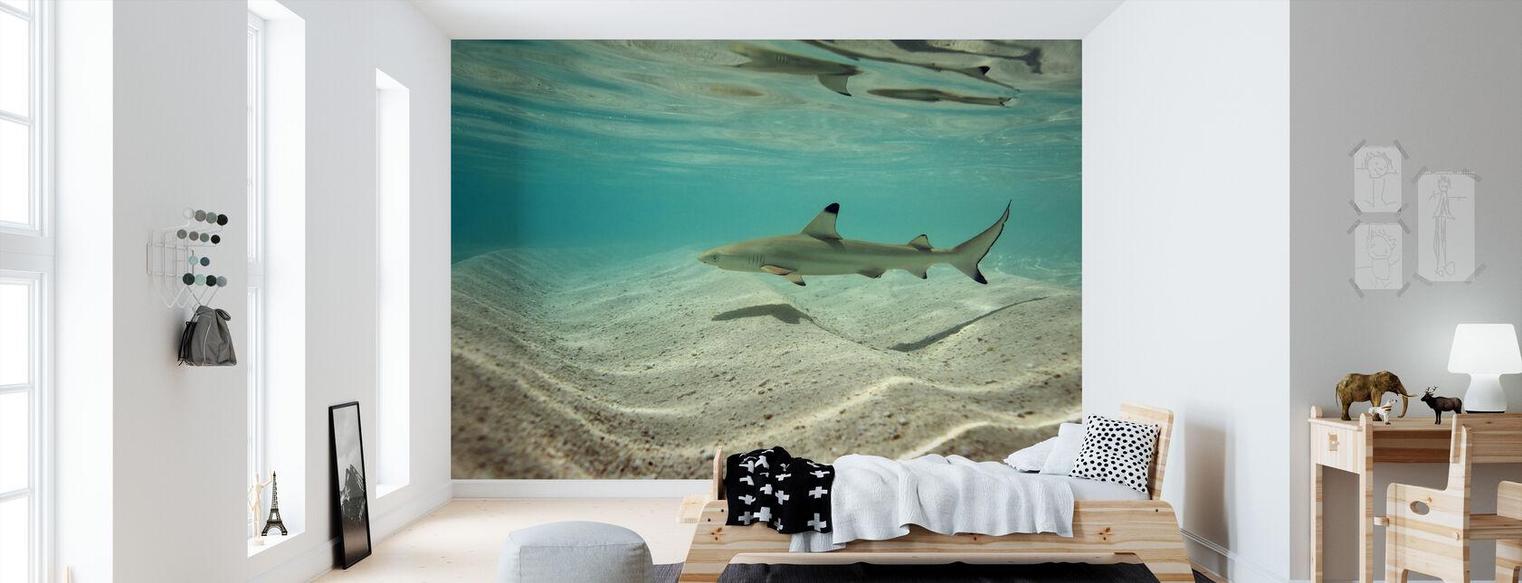 Blacktip Rif Shark - Behang - Kinderkamer