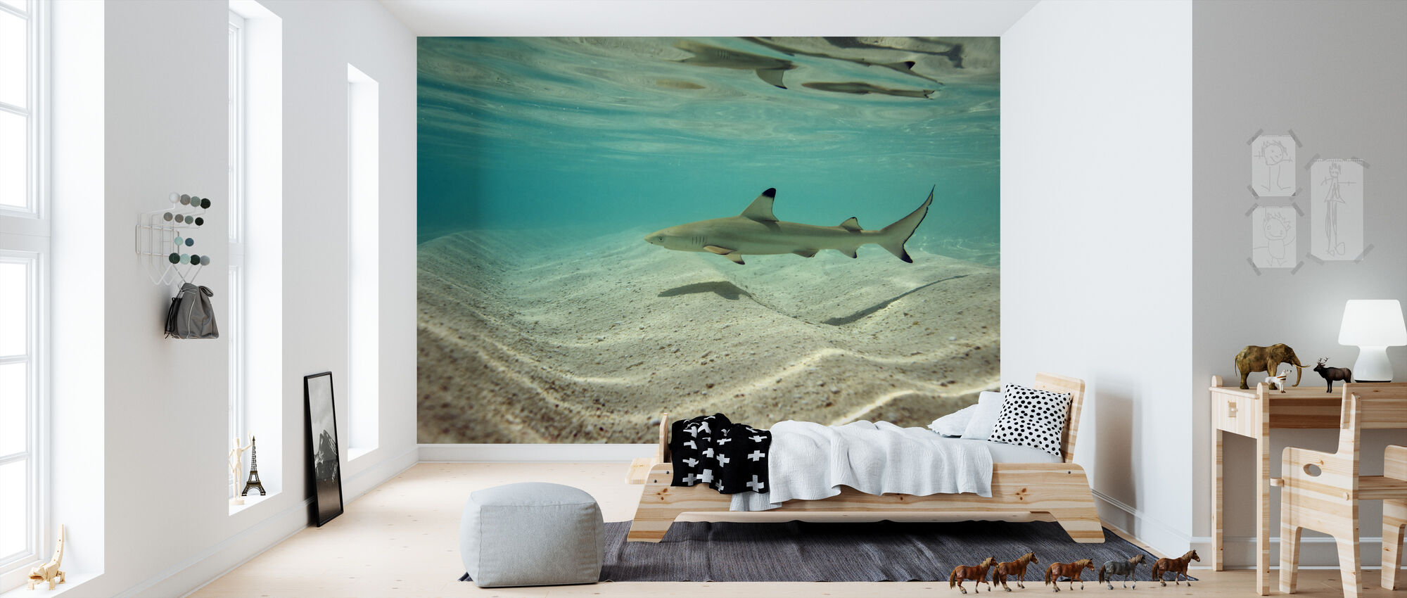 Svartspets Reef Shark - Tapet - Barnrum