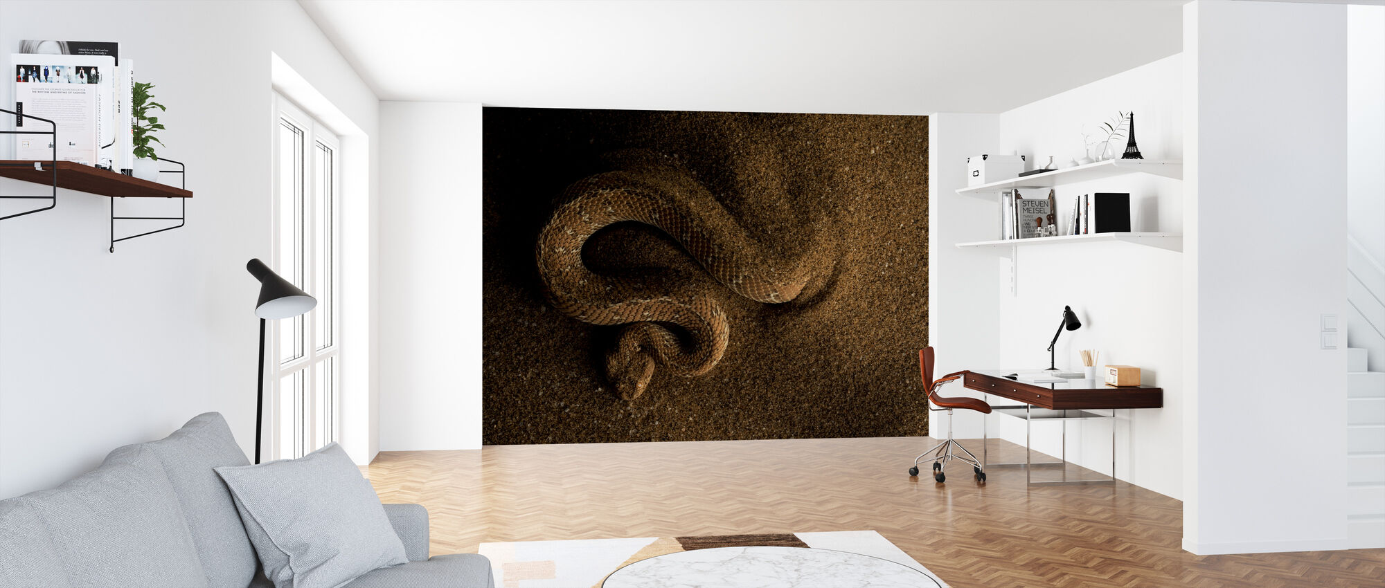 Peringuey's Adder - Wallpaper - Office