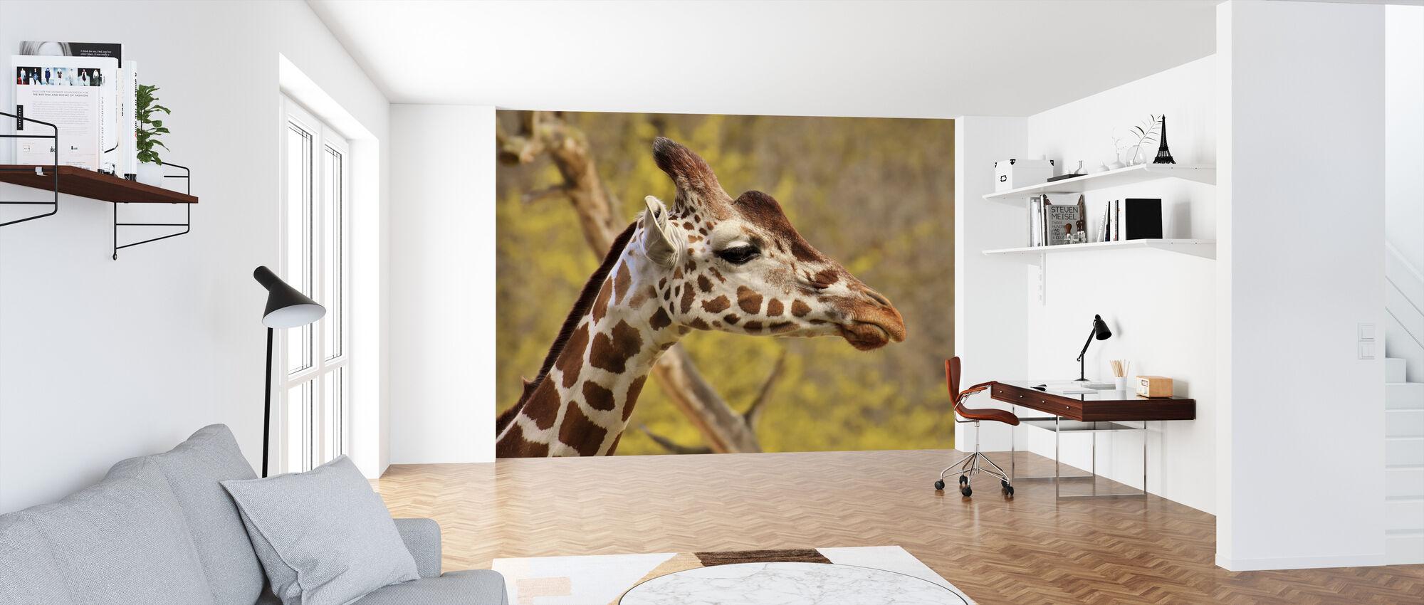 Giraffe - Wallpaper - Office