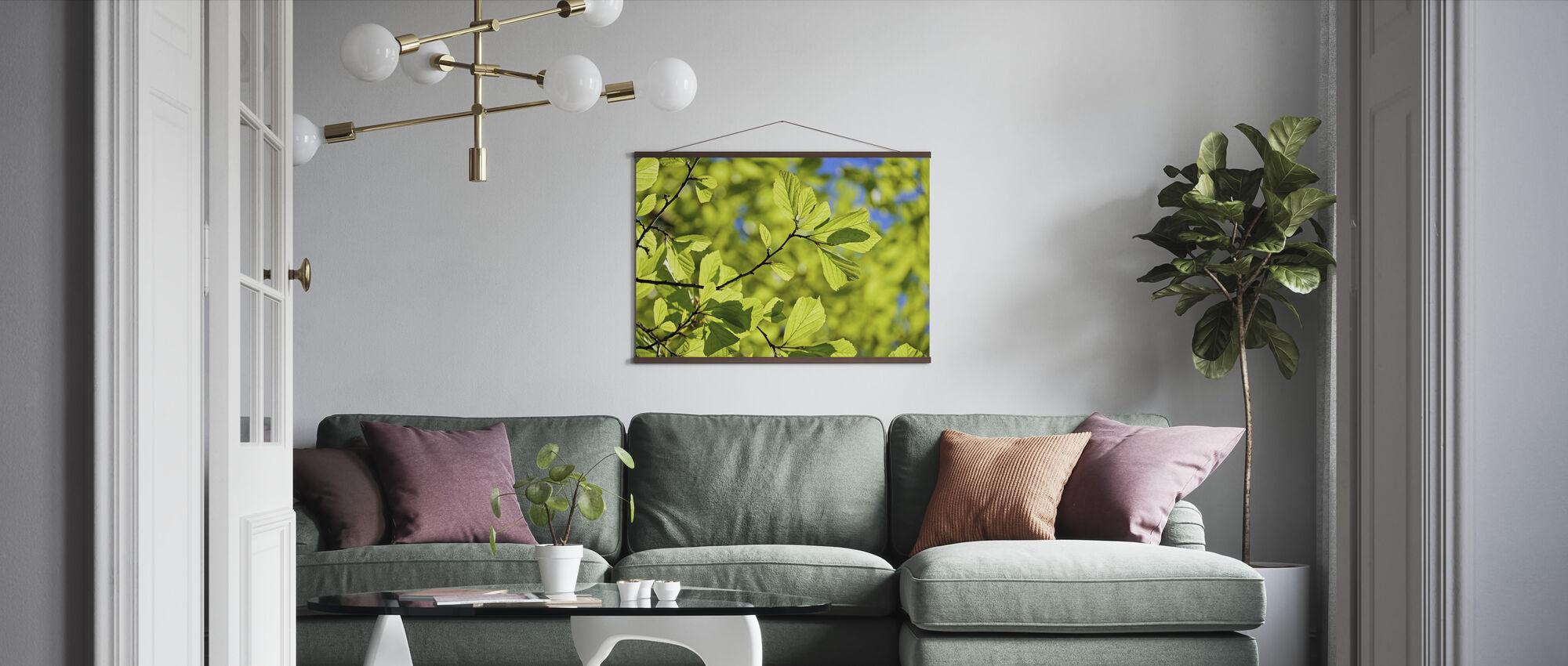Oak Wood Leaves - Poster - Living Room