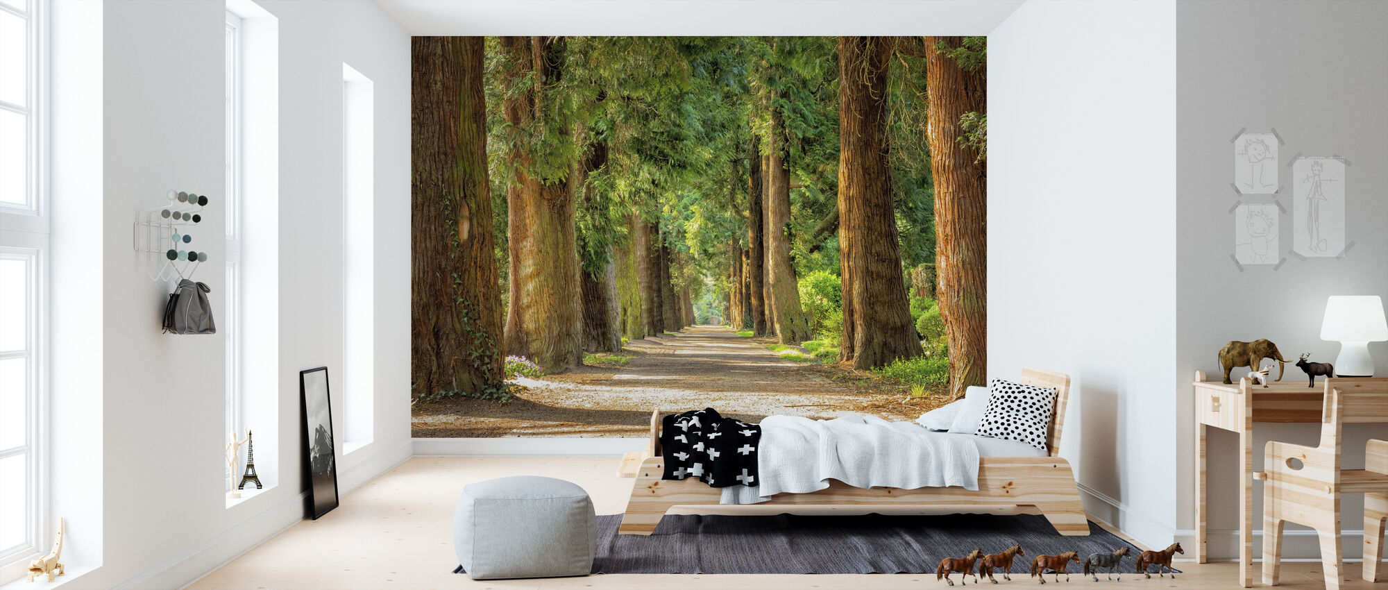 Pathway Between Trees - Wallpaper - Kids Room
