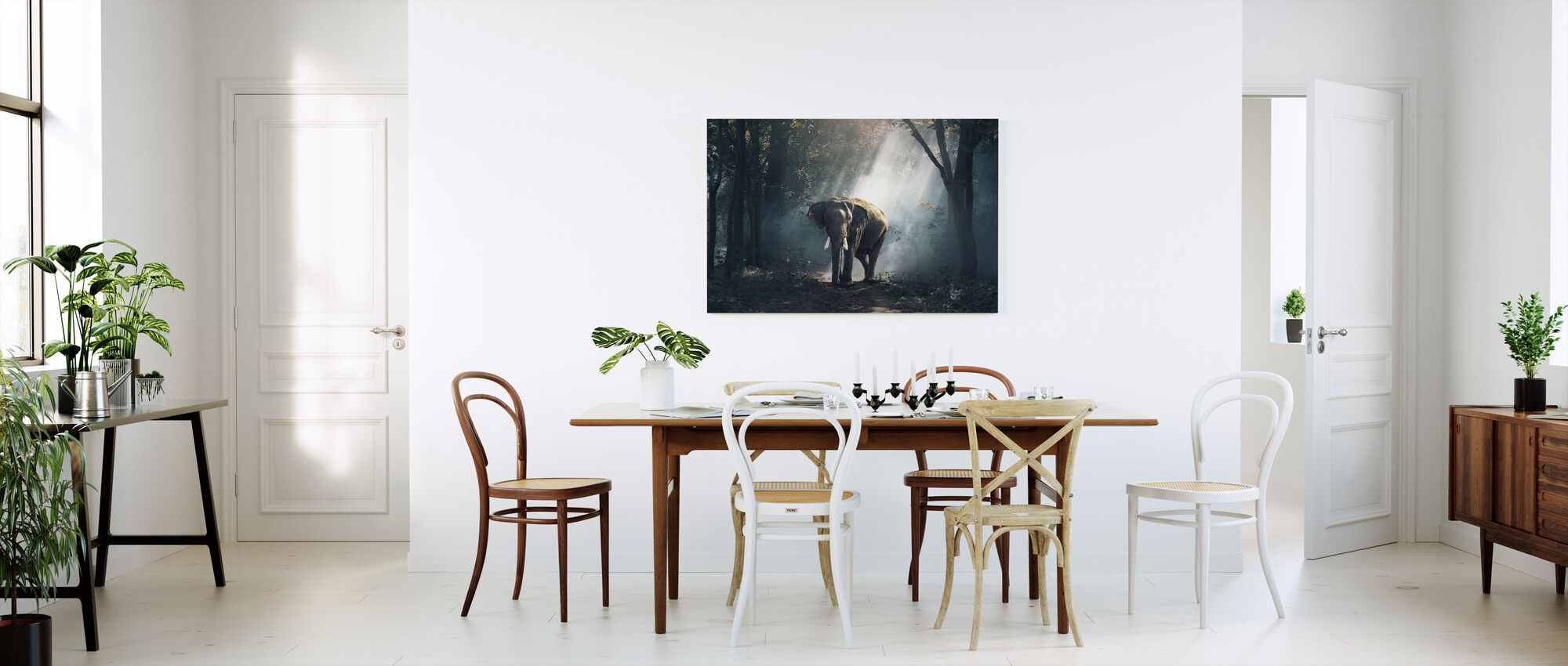 Olifant in het bos - Canvas print - Keuken