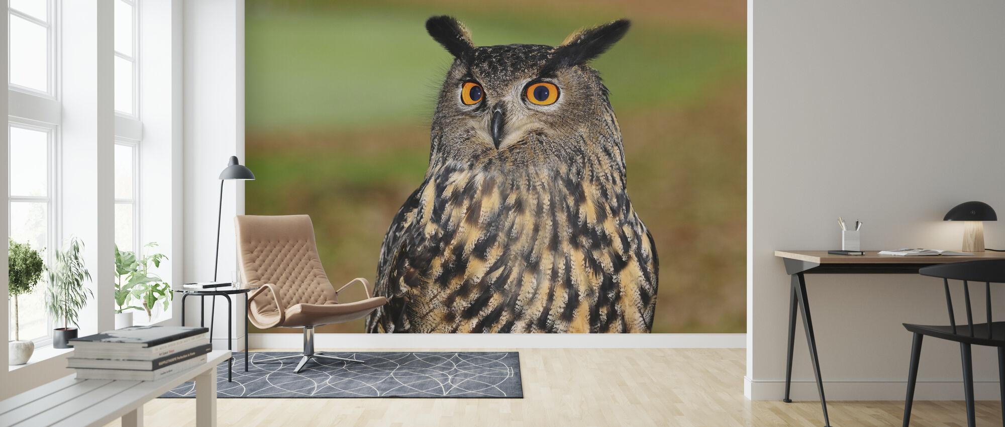 European Eagle Owl - Wallpaper - Living Room