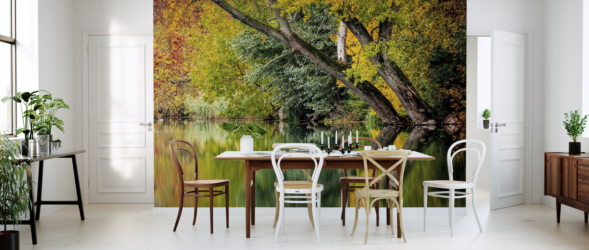 Autumn Reflection - Wallpaper - Kitchen