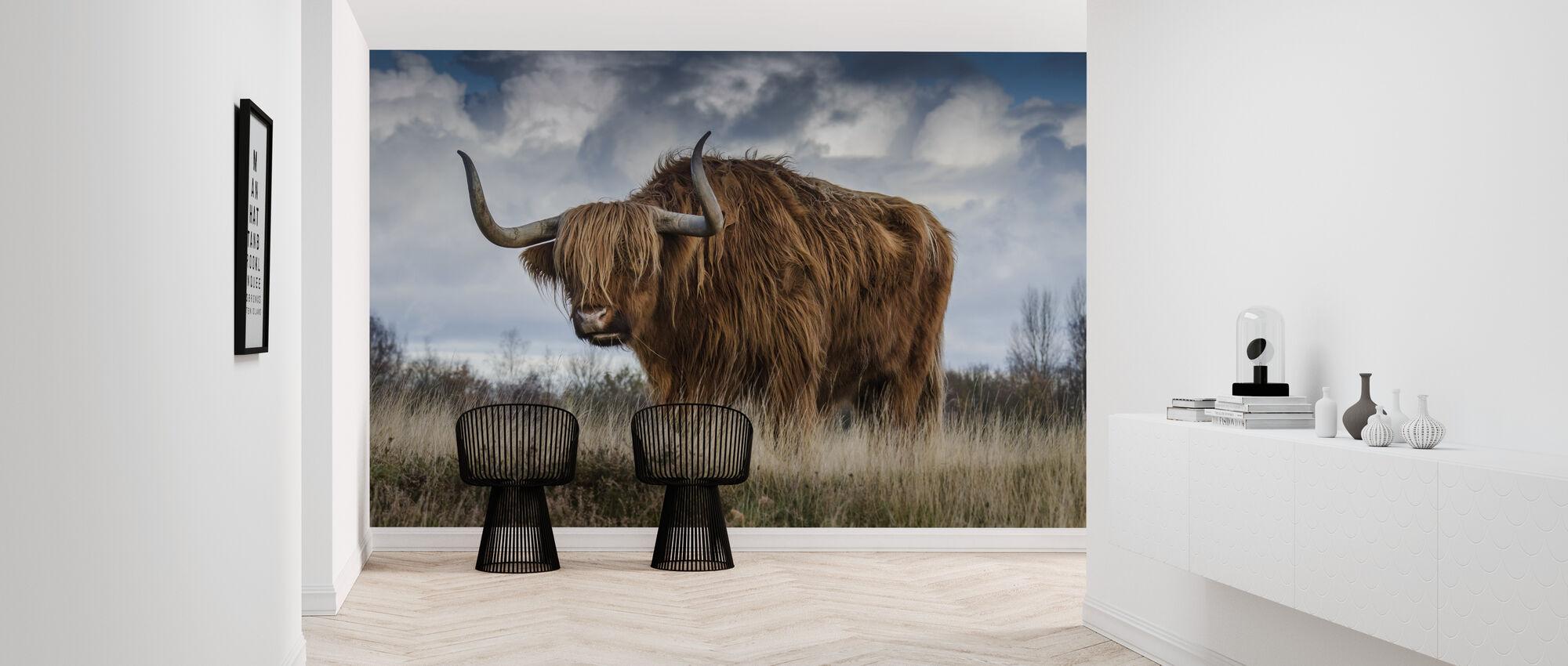 Bull Grazing in the Meadow - Wallpaper - Hallway