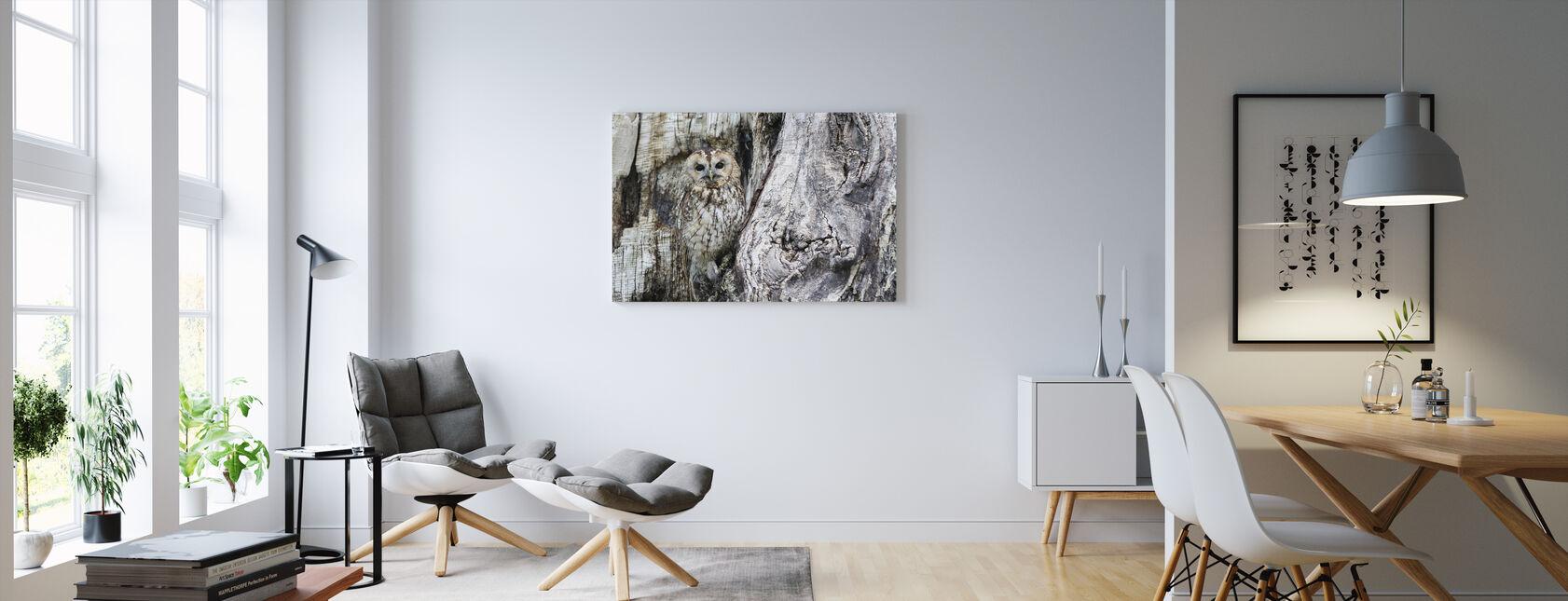Camouflage ugle - Billede på lærred - Stue