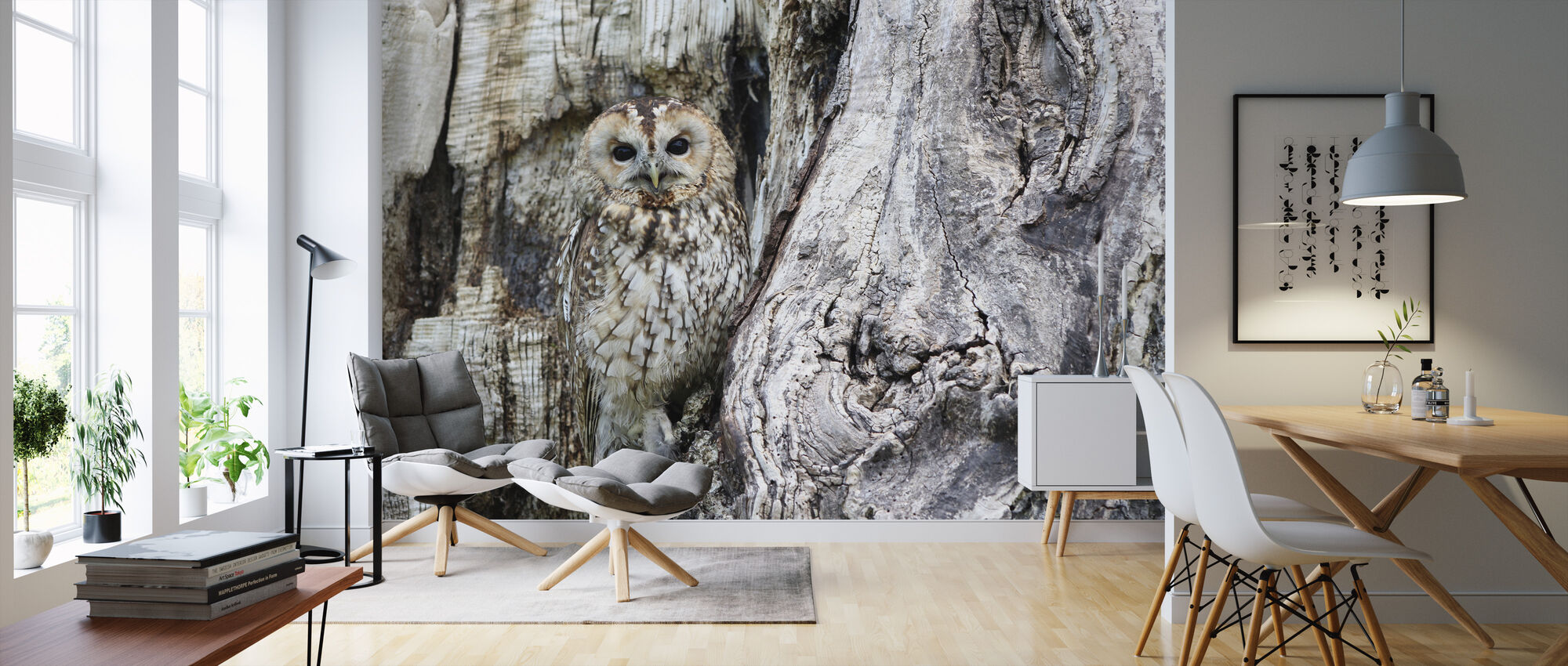 Camouflage Owl - Wallpaper - Living Room